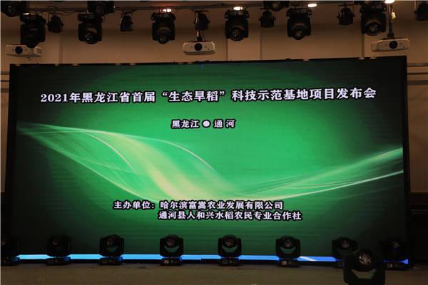 """黑龙江省首届""""生态旱稻""""科技示范基地项目发布会"""