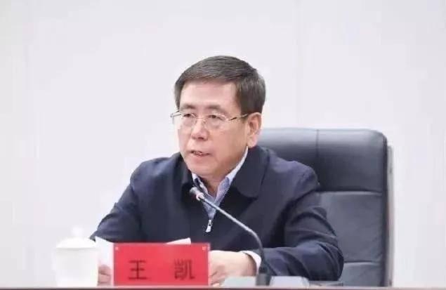 """王凯履新河南代省长,一年内长春市委书记、市长双双""""南下"""""""