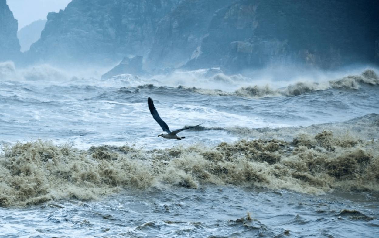 今年是台风年?预计个数偏多,最高或生成29个,10个登陆我国  第6张