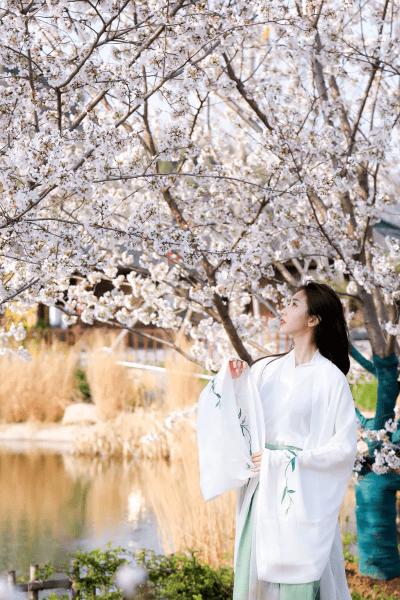 春天是远道而来的浪漫,快来赏尼山春色吧!