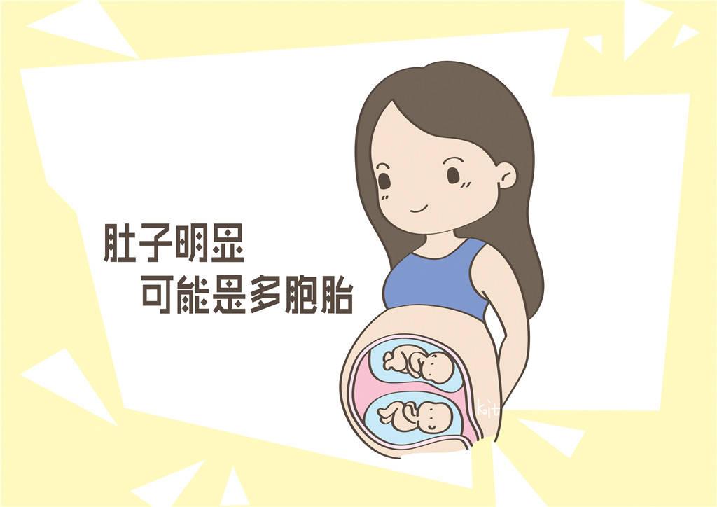 各人体质不同,显怀一事各有不同,背后原因孕妈要多了解