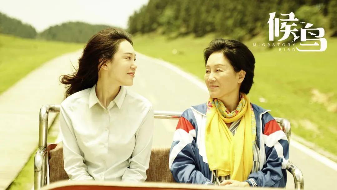 王姬新片《候鸟》饰绝症母亲诠释人间大爱,五一档唯一催泪片来袭