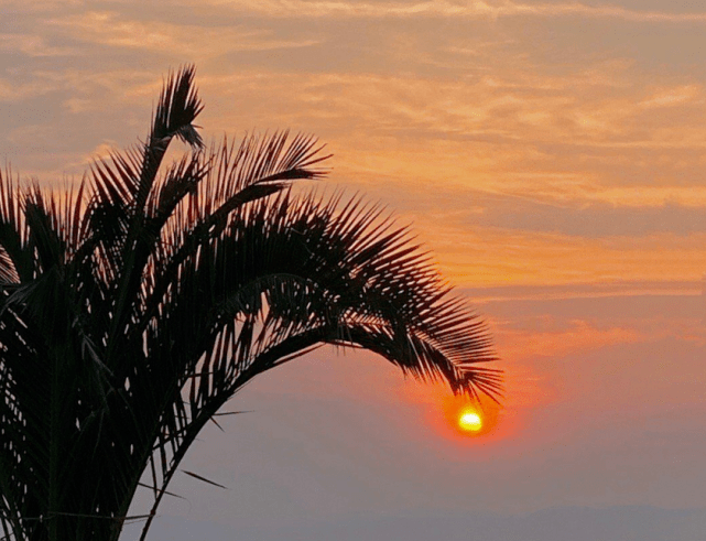 云南昆明捞鱼河湿地公园现惊艳夕阳 夕阳余晖下的姑娘美出天际