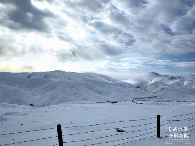 """稀奇!云南会泽大海草山突降大雪,""""夏日雪景""""美翻了!"""