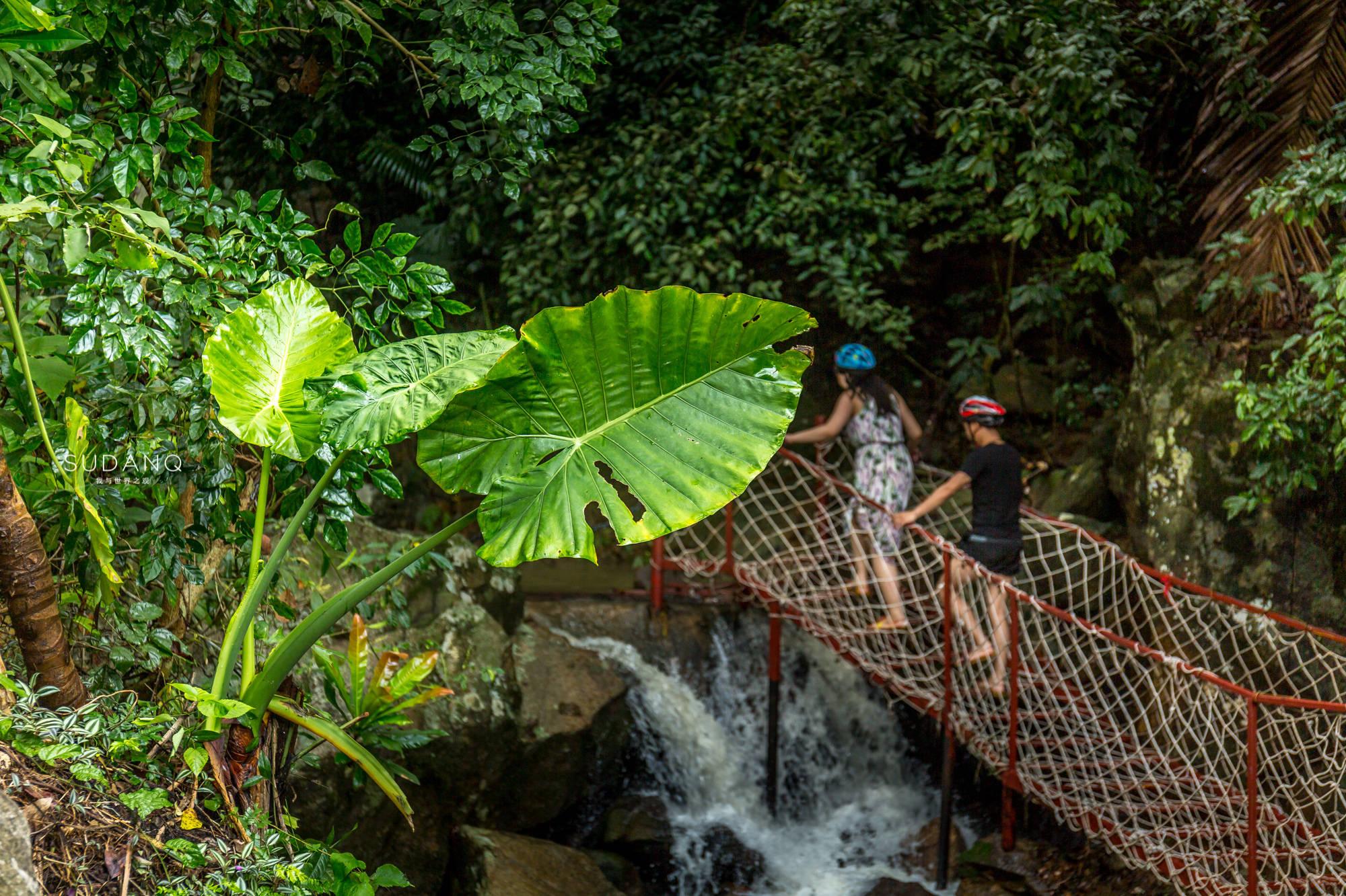 原创             悬崖上的天空之镜:三亚后花园在哪?北纬18度的热带雨林充满惊奇