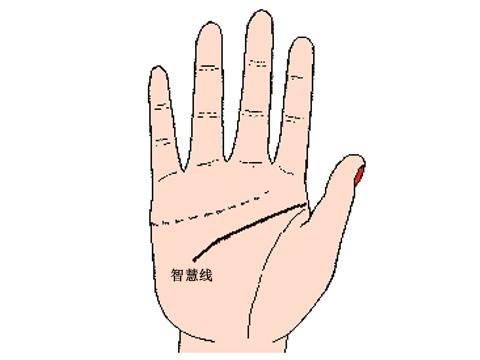 手相智慧线有十字纹、智慧线十字纹图解、不同位置吉凶分析