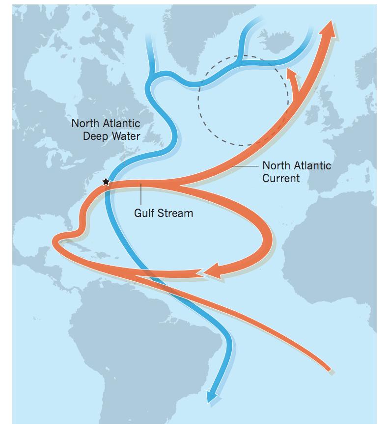 地球正进入第六次大灭绝时代?科学家:前所未有的危机或将到来  第13张