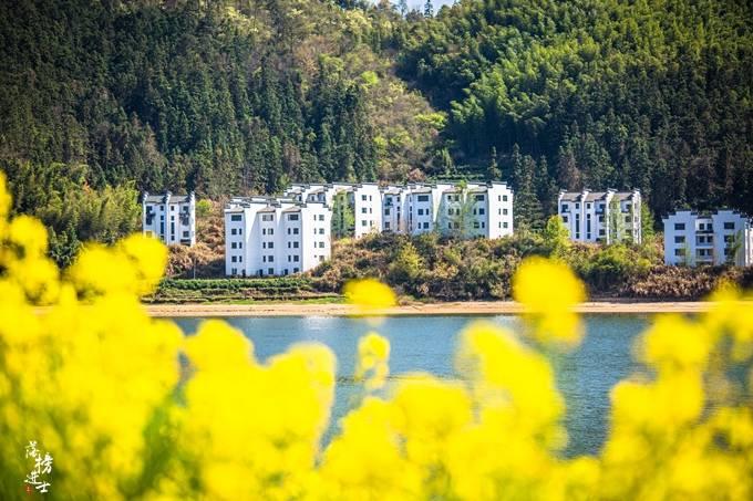 原创             宏村景区人从众,旁边有一处奇墅湖,景色美,免门票,游客还不多