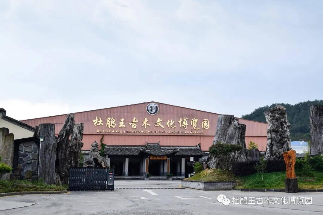 杜鹃王古木文化博览园