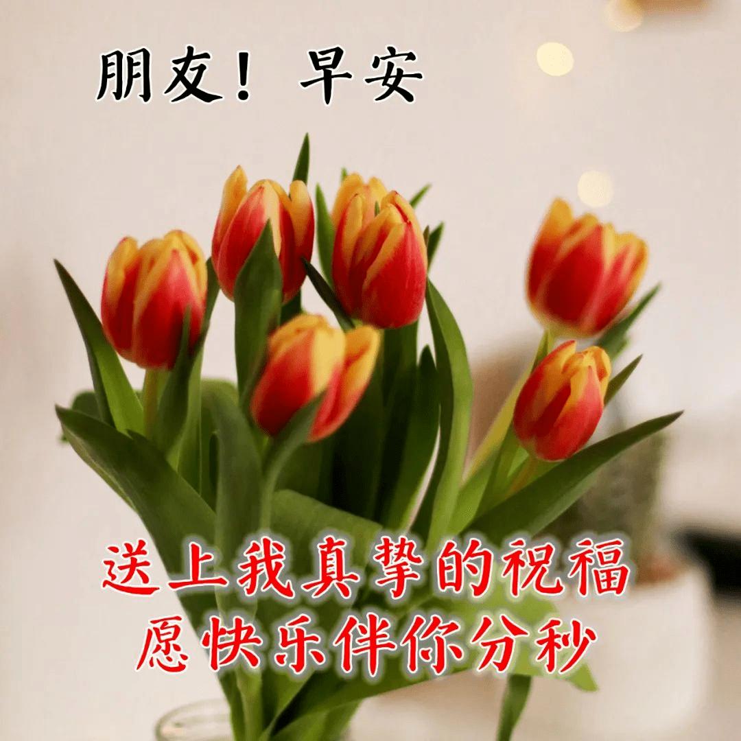 清晨温馨祝福语录图片,早上空气清新,祝你事事顺心!