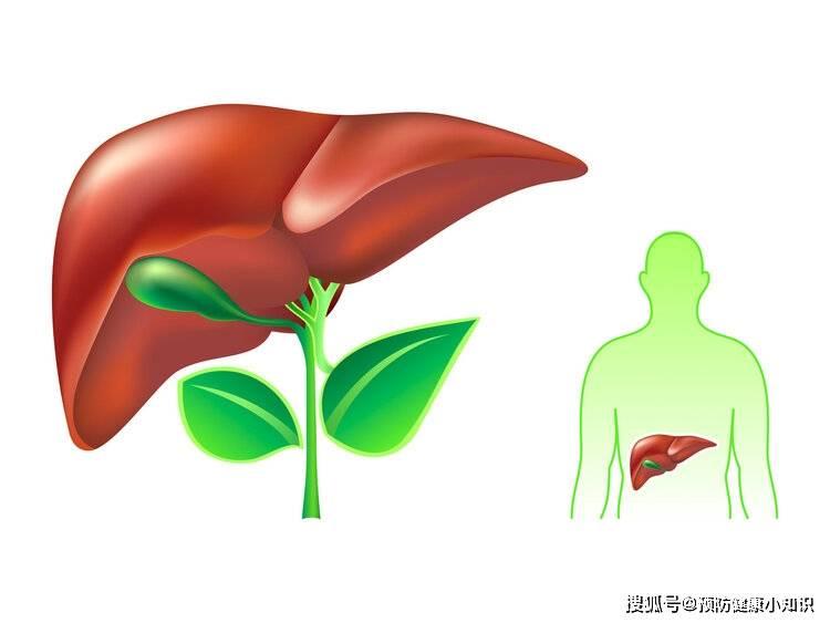 誤以為面板過敏,數月後肝癌離世,提醒:2個異常出現,要當心