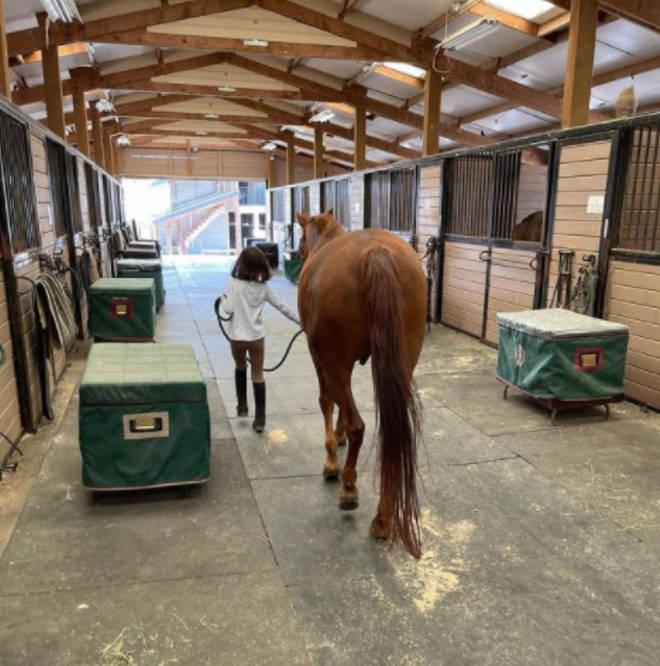 图片[2]-吴彦祖女儿罕见露正脸,遗传大长腿太惹眼,从小学习骑马精英教育-番号都