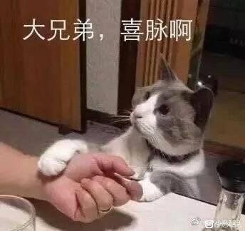西山居美工太离谱(七夕成男外观被调侃)