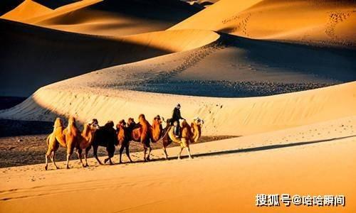 如果把沙子都挖空,沙漠下面会是什么景象?考古学家会非常激动