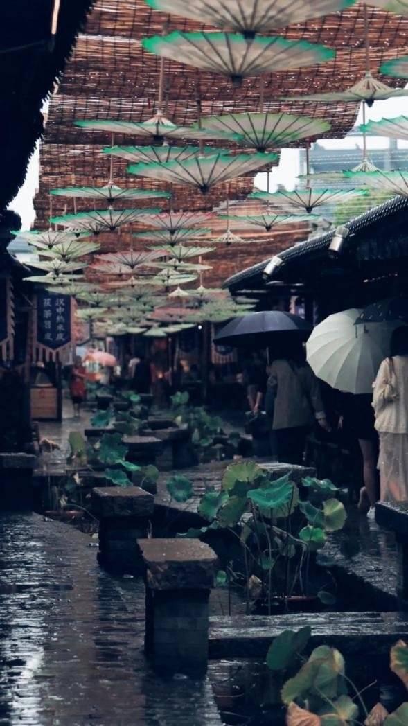 微风徐徐,泾河之畔时间煮雨,邂逅朦胧诗意茯茶小镇