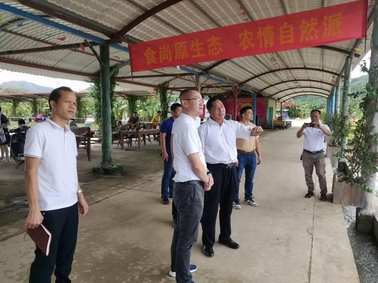 三亚市吉阳区区委书记陈明前往红花共享农庄进行调研