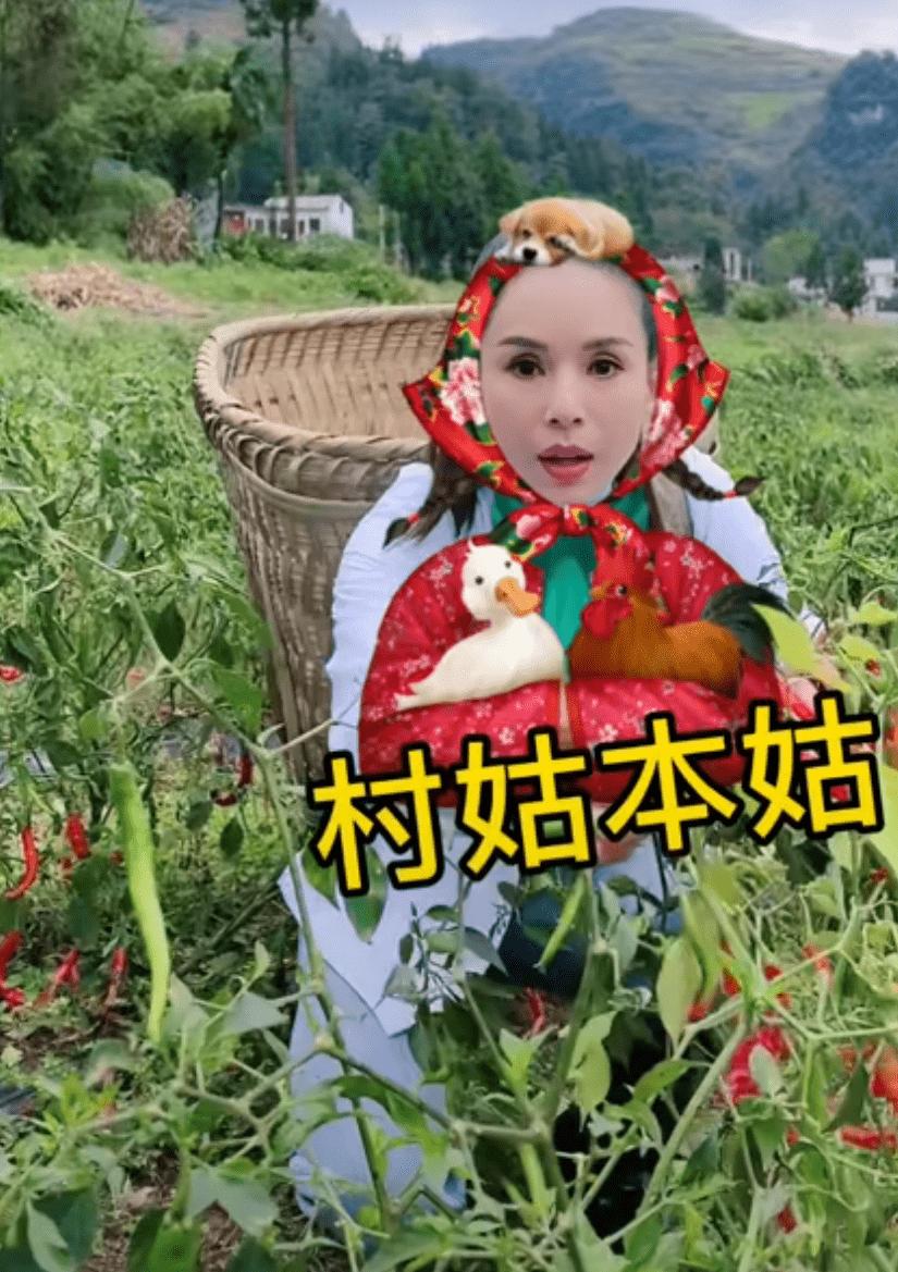 55岁李若彤自侃变村姑,亲自下地干活帮赶牛,筷子
