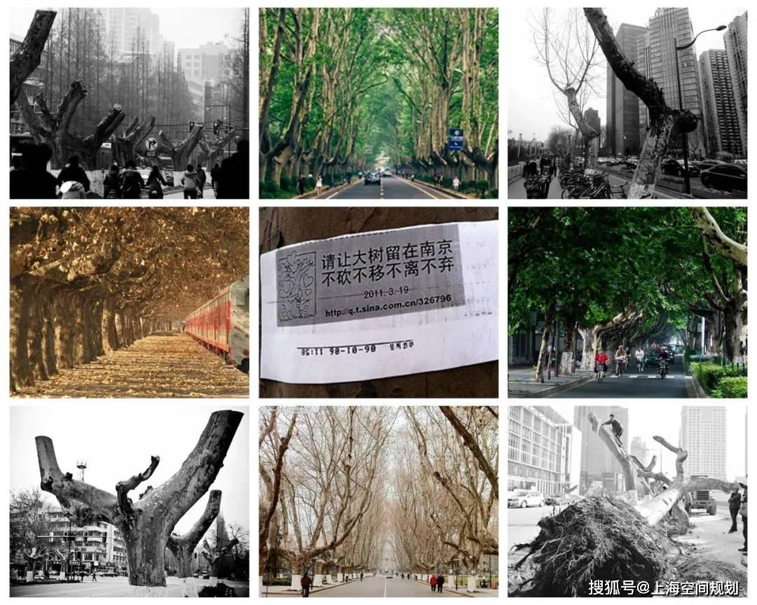 空间视野|南京百年城市发展之路:从铁腕到柔情