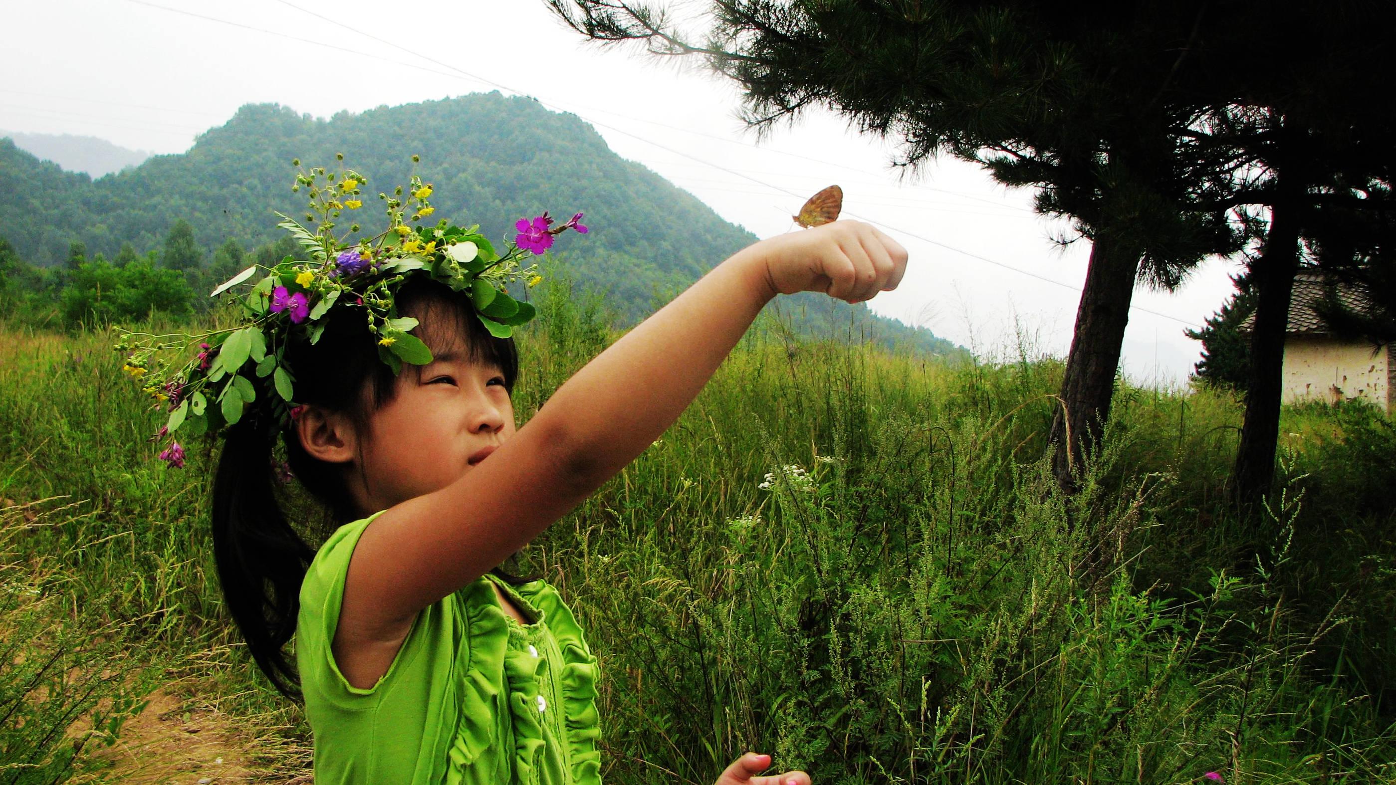 原创             小蝴蝶,你飞走吧!花海才是你的家《那些年,我们一起走过》