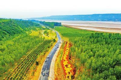 河南沿黄林业生态建设再加速