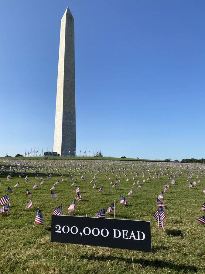 面向白宫!美国志愿者在国家广场插2万国旗,纪念20万新冠死者