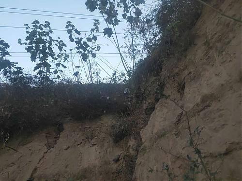 邯郸肥乡区一村支书违法占地200余亩建搅拌站