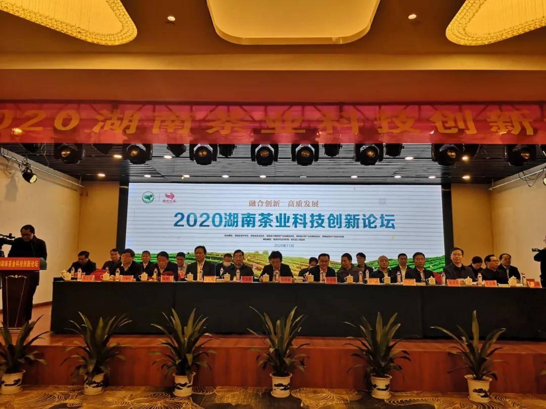 2020湖南茶业科技创新论坛在湖南省娄底市新化县举行