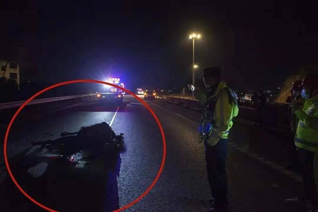 蠢!浙江一女司机在公路上撞了马!我没想到还有一匹马