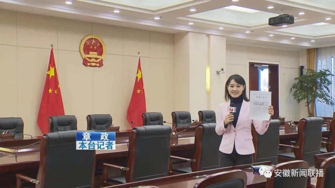 强化监督 为经济社会发展保驾护航——2020年安徽省十三届人大常委会工作综述(二)