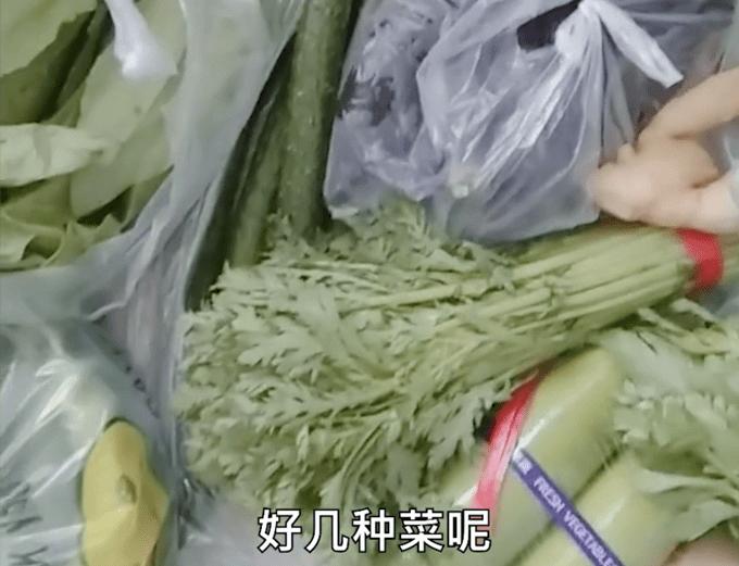 吉林通化市民早起发现门口堆满蔬菜:家家都有,政府真好!