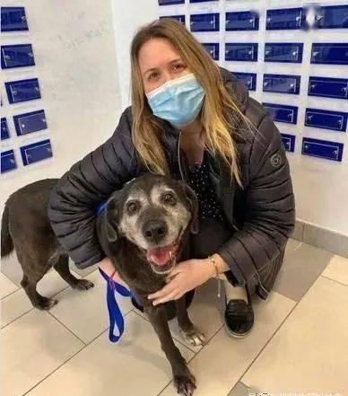 她失去18岁爱犬,不打算再养宠物,结果当晚找到同名接班汪!