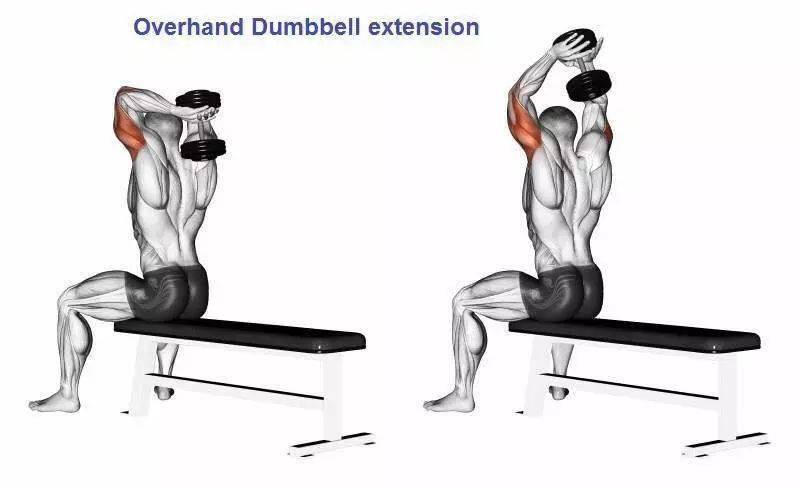 欧亿5登录:让男人更粗的25大动作,手臂训练必备!