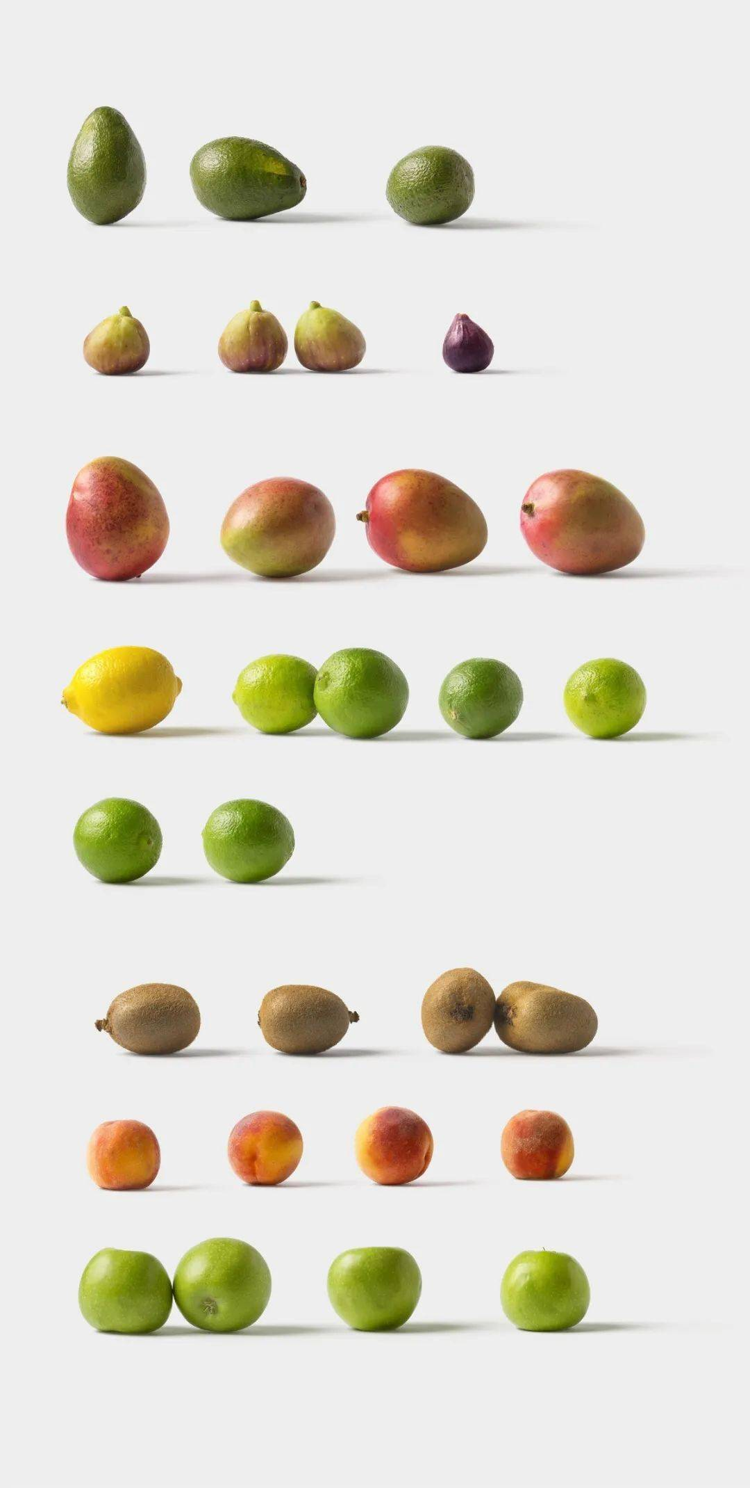画画大全简单漂亮水果