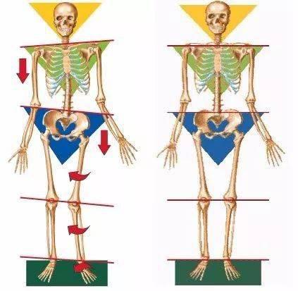 练瑜伽,为什么要压脚踝,开脚背?_身体