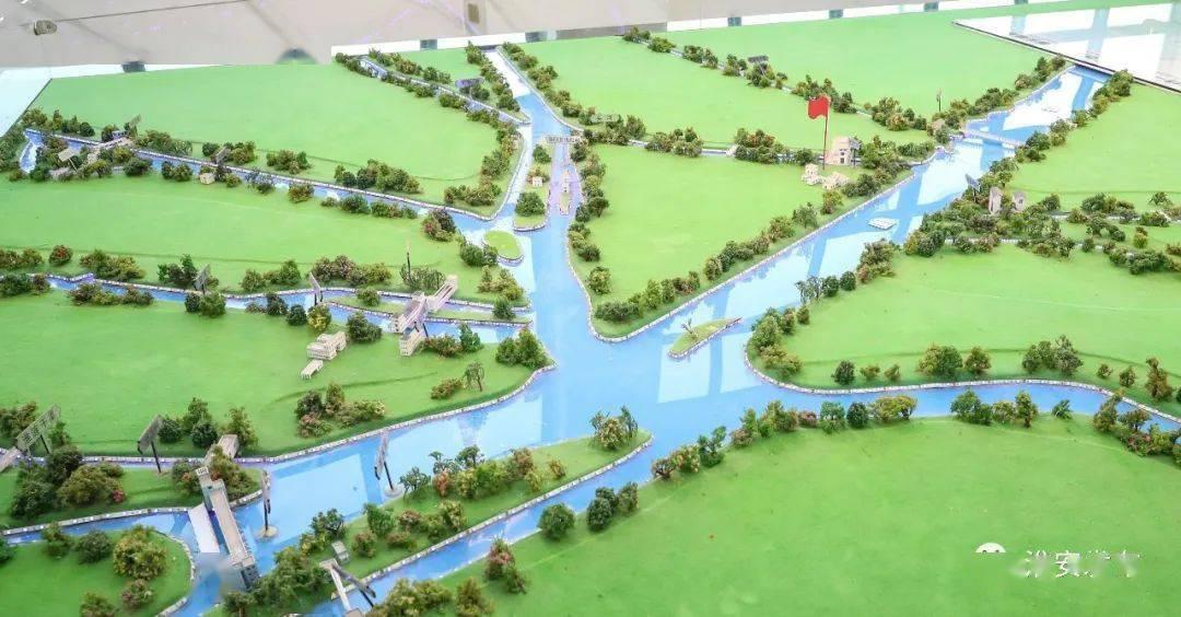 高水平规划建设!今天,市长陈之常来到五河口等滨水区域调研!