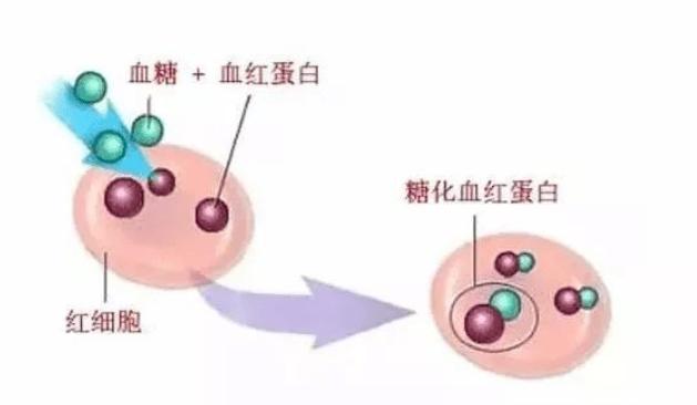 你应该清楚这些关于糖化血红蛋白的问题