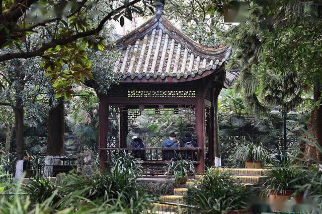 成都有座网红公园,4大老牌茶社坐镇,外地