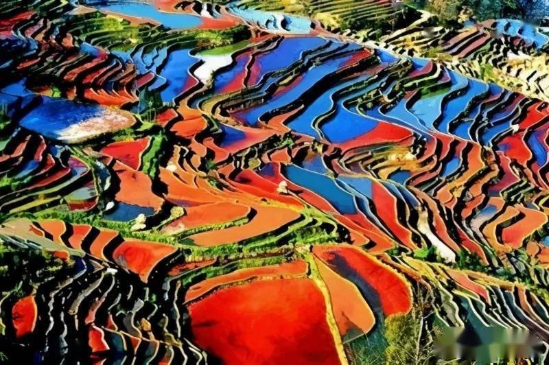 樱花动漫:元阳梯田,是真正的大地艺术,犹如一幅幅油画 网络快讯 第2张