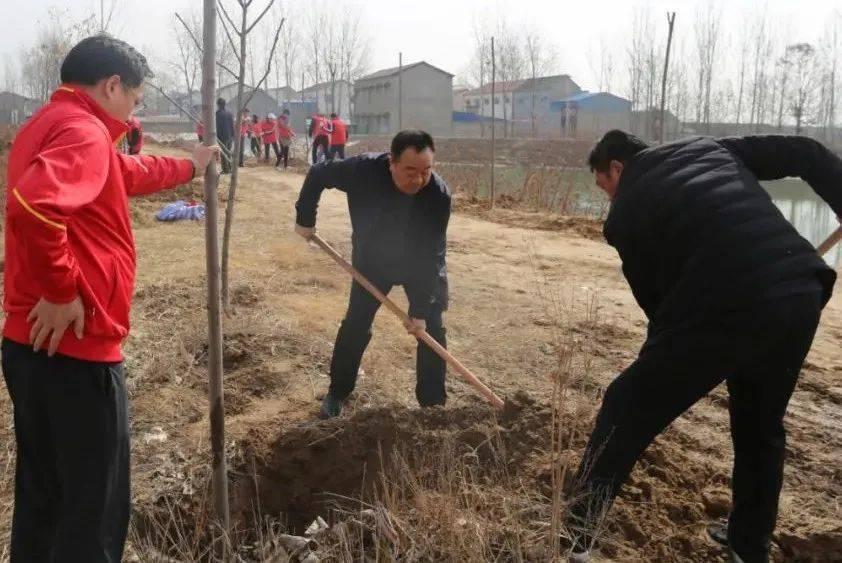 新乡市总工会开展义务植树活动