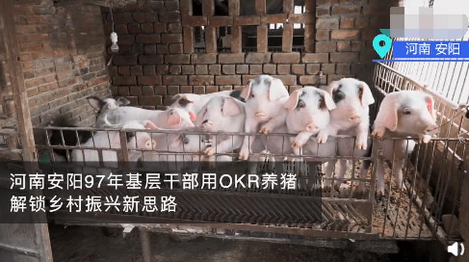河南安阳97年基层干部用OKR养猪 OKR是什么意思?