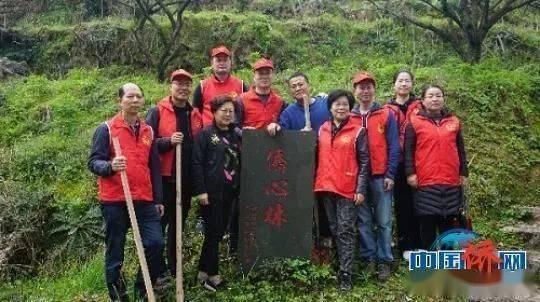 华侨华人与树的故事丨世界森林日