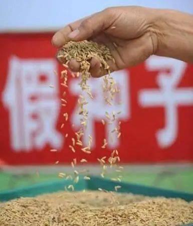 四川农资打假在行动 通报去年十大典型案例