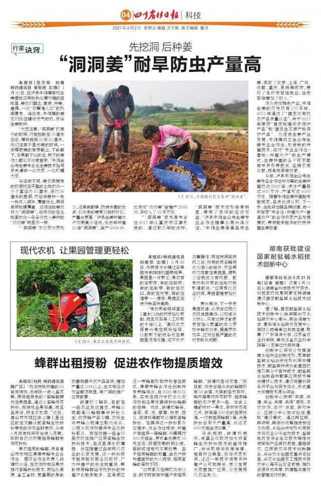 湖南获批建设国家耐盐碱水稻技术创新中心