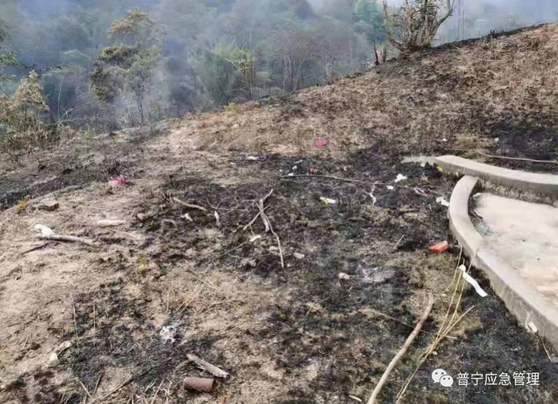 广东普宁母子祭祖时焚烧物品失火致150亩山林被烧!被刑拘