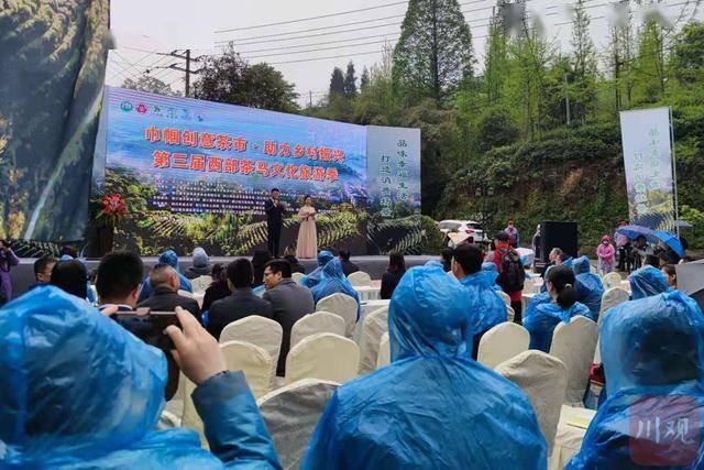 清明小长假去采茶品茶 都江堰市第三届茶马文化季启动