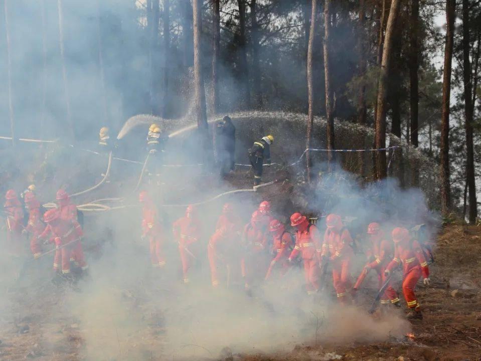 厉兵秣马 枕戈待旦|乐山消防扎实推进森林防灭火工作