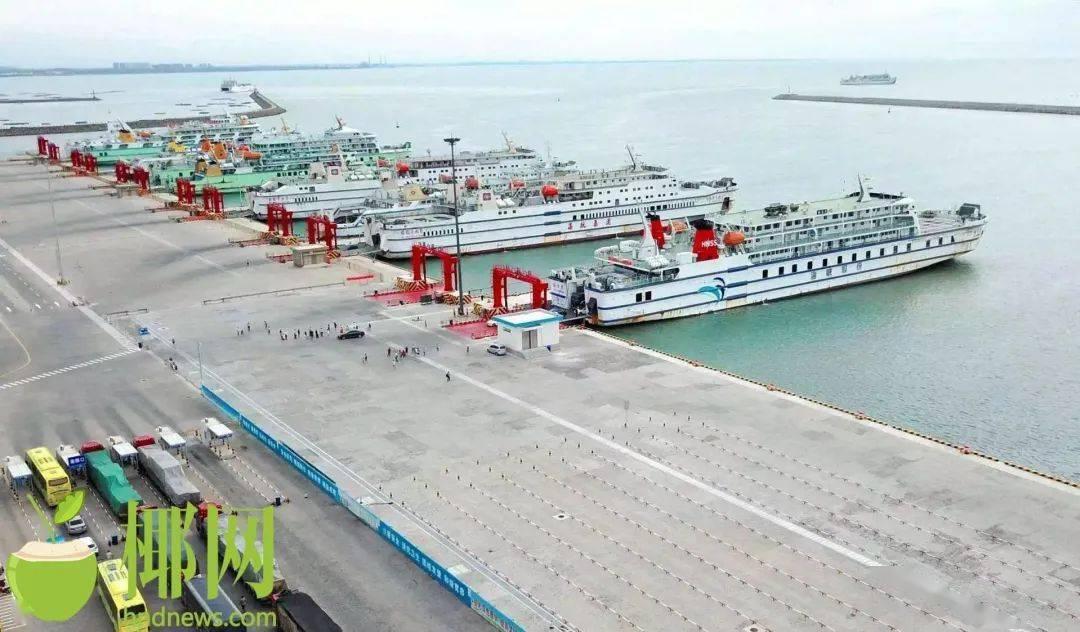 待渡车辆激增,琼粤4港启动应急疏运模式