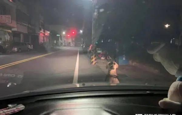 开车回家半路遇路霸,定睛一看,原来是......