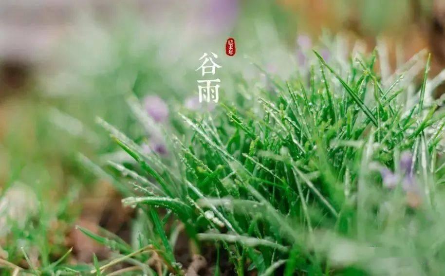 星辉开户-首页【1.1.3】