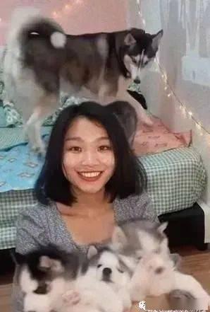 妈抱小奶狗合照,结果哈士奇在后头表现出的心机太重了!